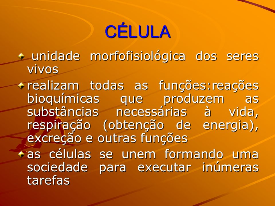CÉLULA unidade morfofisiológica dos seres vivos