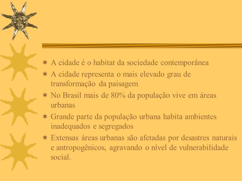 A cidade é o habitat da sociedade contemporânea