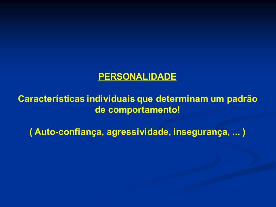 Características individuais que determinam um padrão de comportamento!