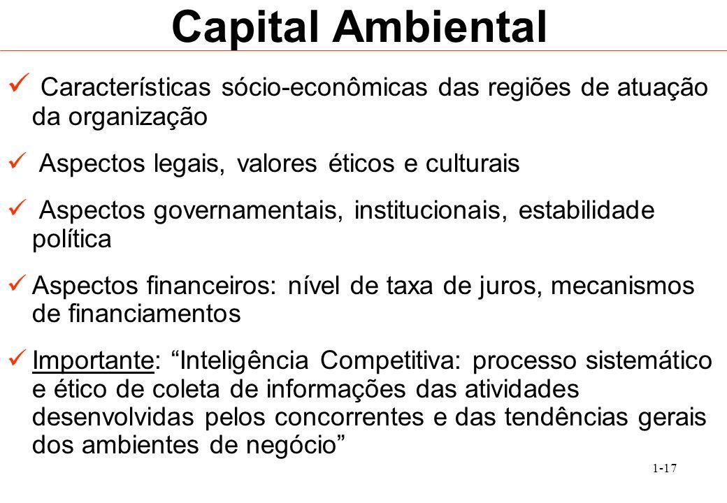 Capital AmbientalCaracterísticas sócio-econômicas das regiões de atuação da organização. Aspectos legais, valores éticos e culturais.