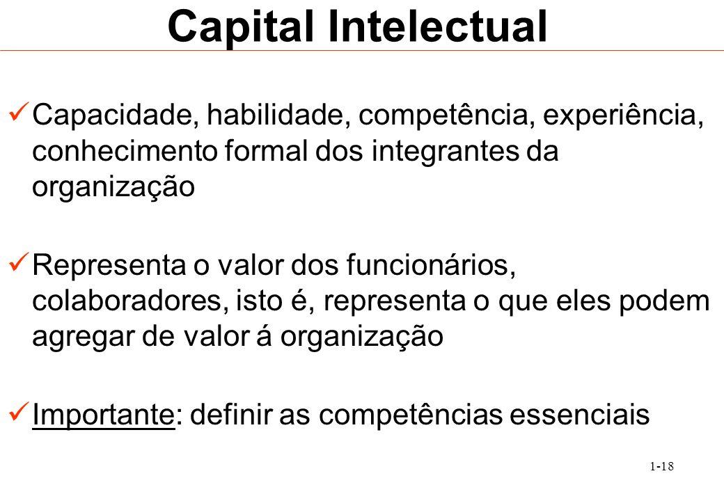 Capital IntelectualCapacidade, habilidade, competência, experiência, conhecimento formal dos integrantes da organização.