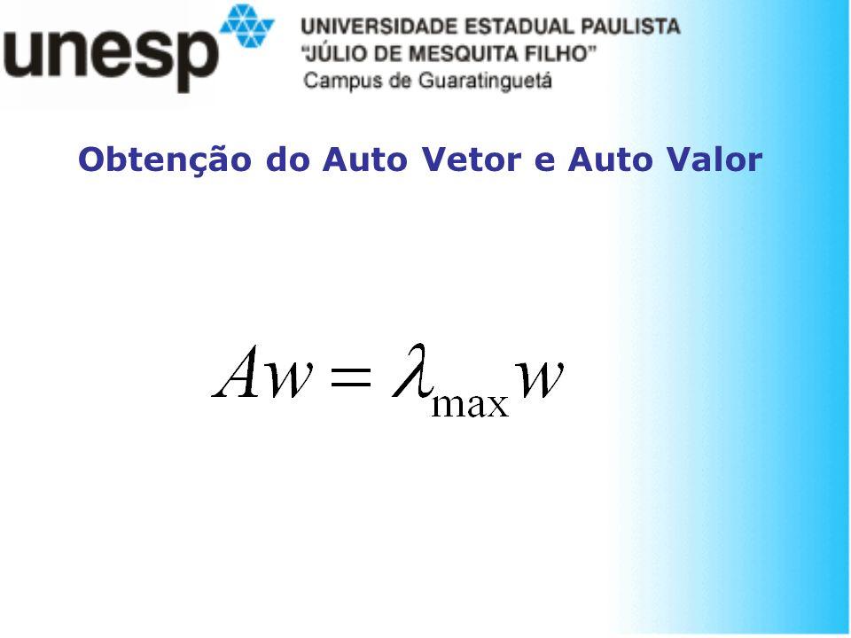 Obtenção do Auto Vetor e Auto Valor