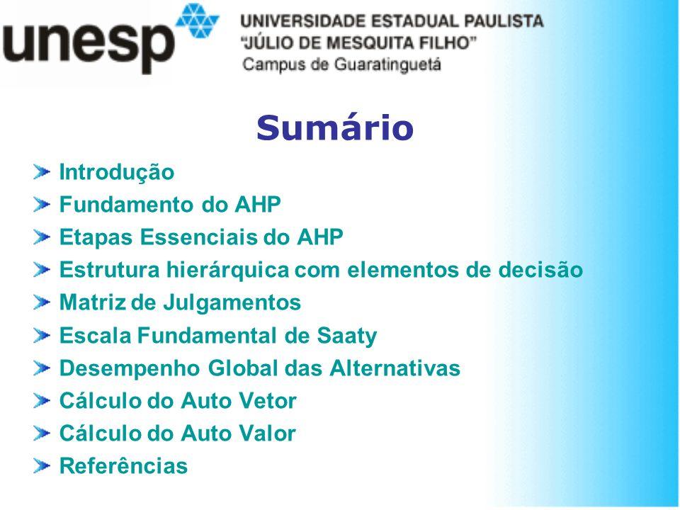 Sumário Introdução Fundamento do AHP Etapas Essenciais do AHP