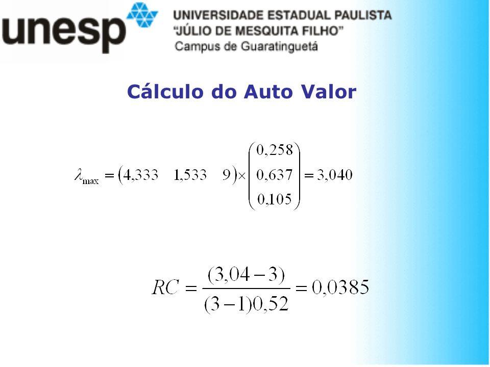Cálculo do Auto Valor