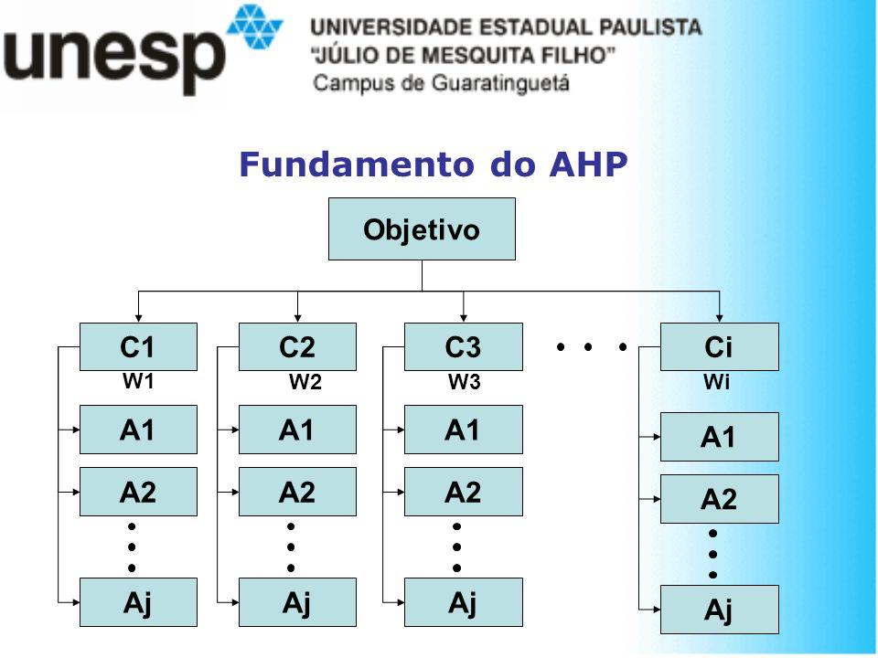 Fundamento do AHP Objetivo C1 C2 C3 Ci A1 A2 Aj A1 A2 Aj A1 A2 Aj A1