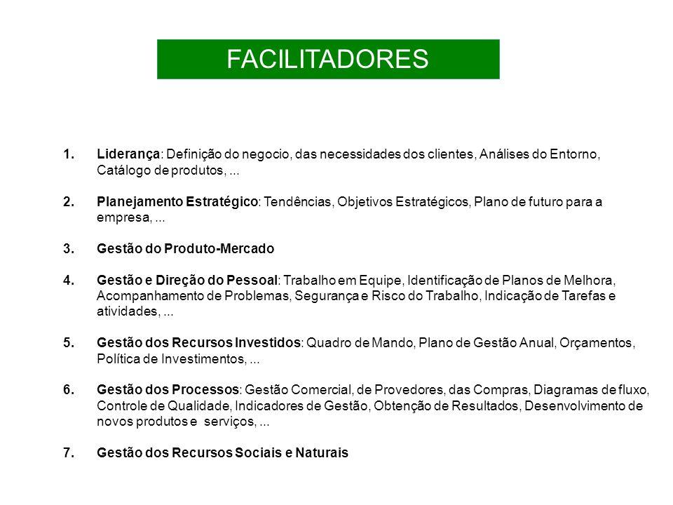 FACILITADORES Liderança: Definição do negocio, das necessidades dos clientes, Análises do Entorno, Catálogo de produtos, ...