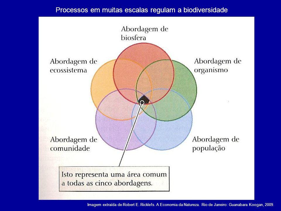 Processos em muitas escalas regulam a biodiversidade