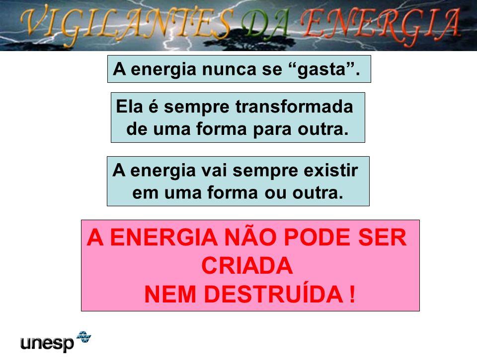 A ENERGIA NÃO PODE SER CRIADA NEM DESTRUÍDA !