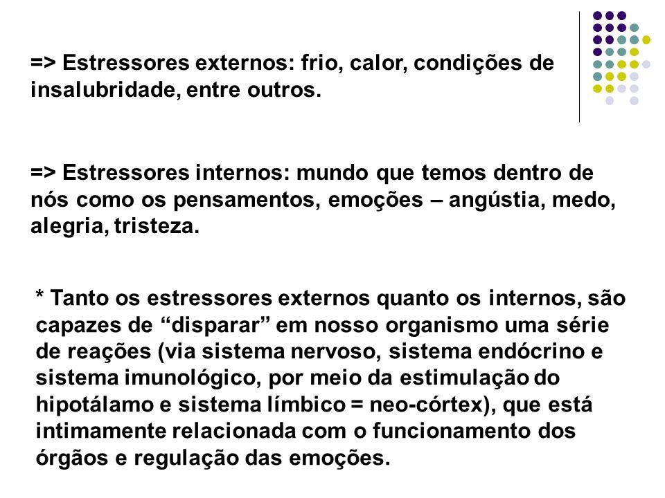 => Estressores externos: frio, calor, condições de insalubridade, entre outros.