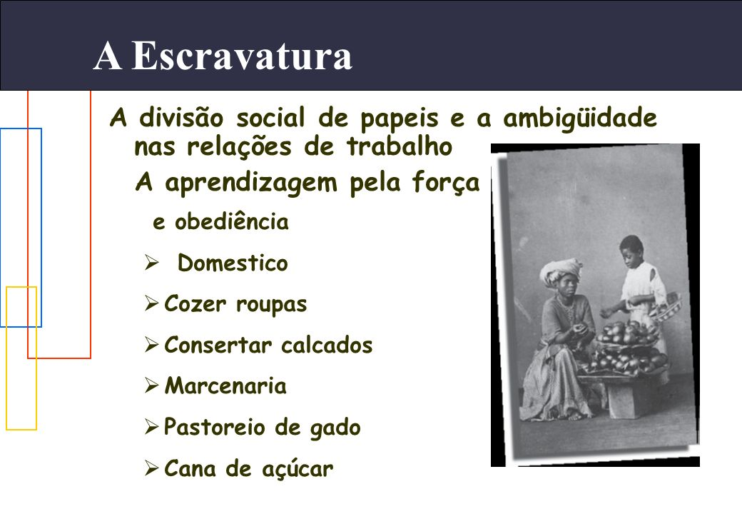 A Escravatura A divisão social de papeis e a ambigüidade nas relações de trabalho. A aprendizagem pela força.