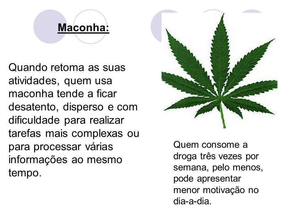Maconha: