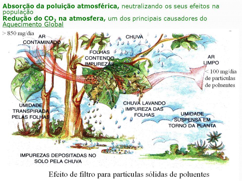 Absorção da poluição atmosférica, neutralizando os seus efeitos na população
