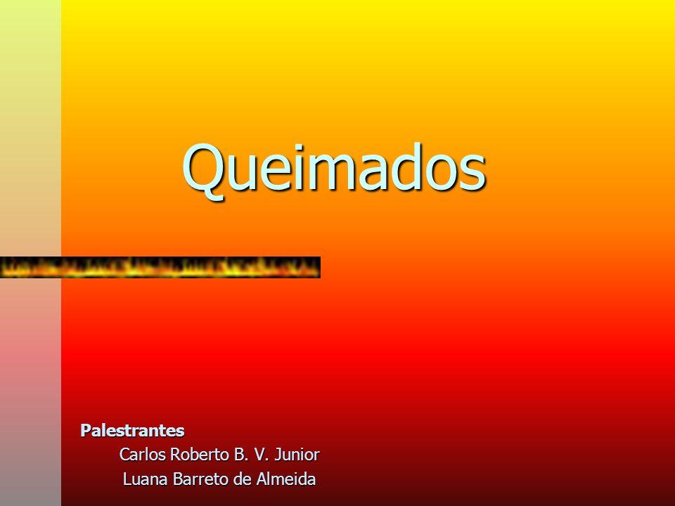 Palestrantes Carlos Roberto B. V. Junior Luana Barreto de Almeida