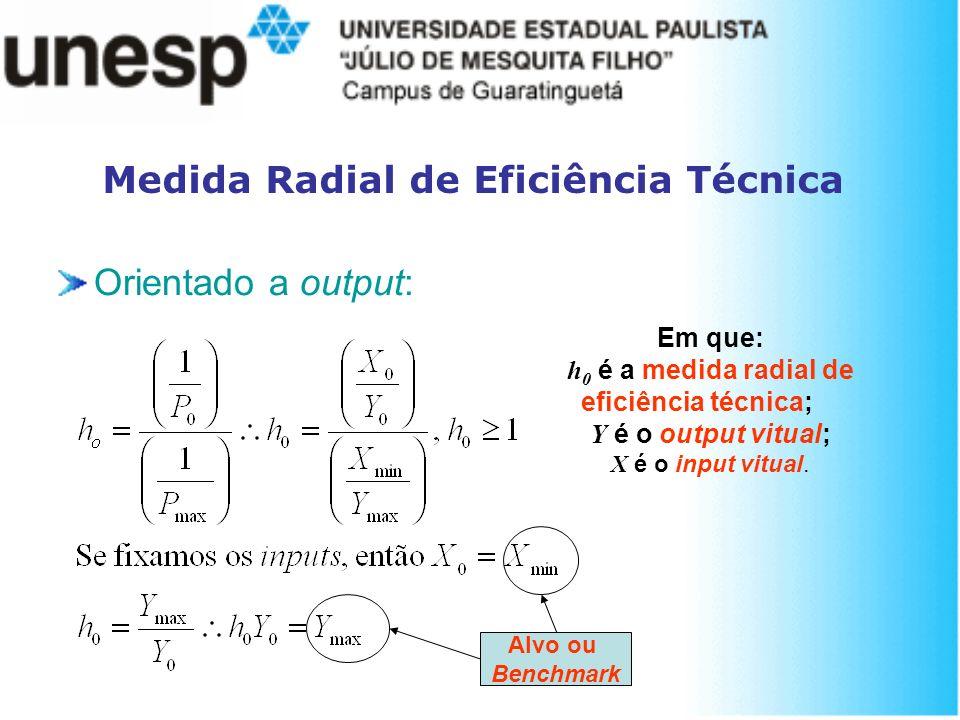 Medida Radial de Eficiência Técnica