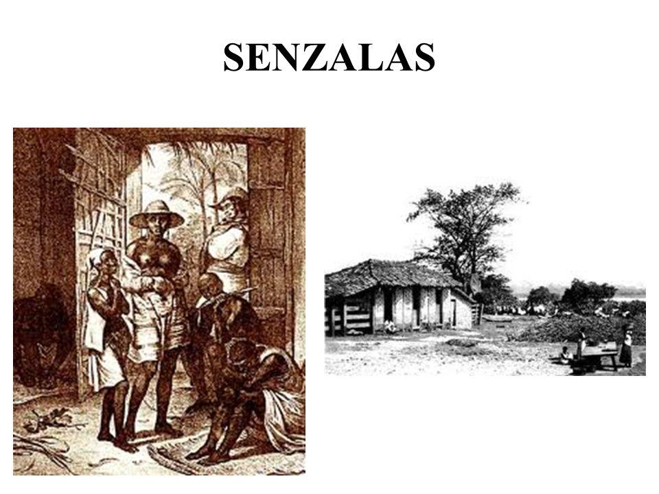 SENZALAS