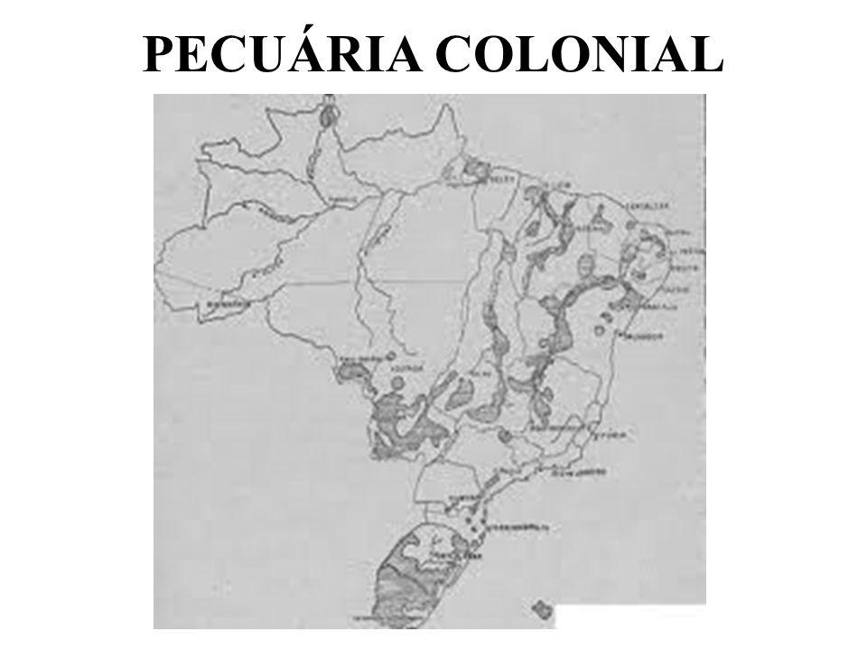 PECUÁRIA COLONIAL
