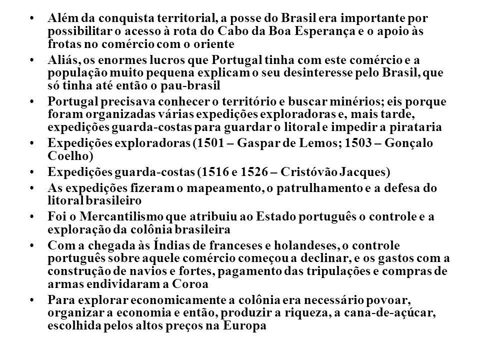 Além da conquista territorial, a posse do Brasil era importante por possibilitar o acesso à rota do Cabo da Boa Esperança e o apoio às frotas no comércio com o oriente