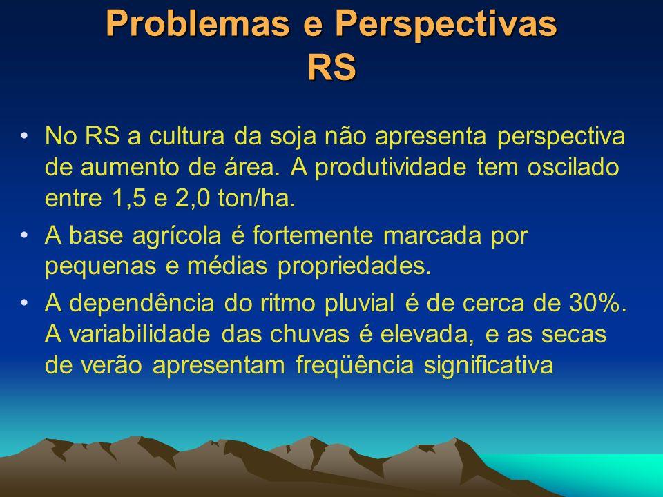 Problemas e Perspectivas RS