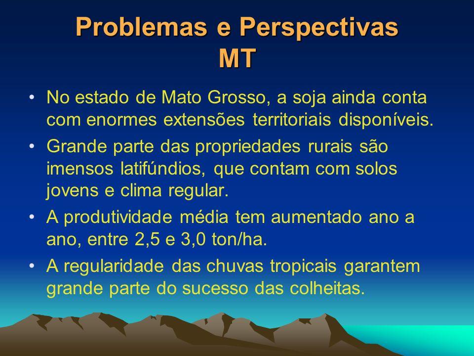 Problemas e Perspectivas MT