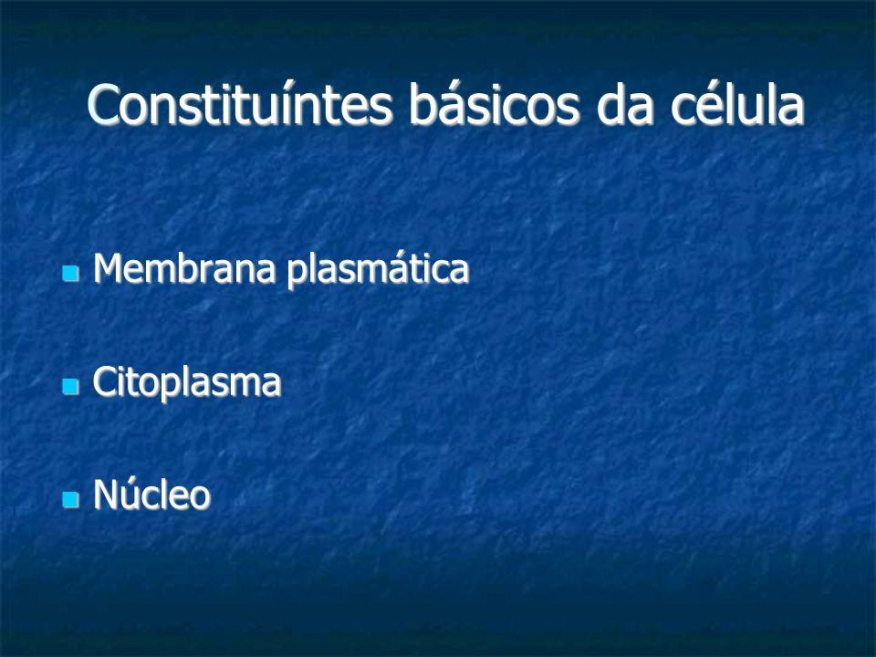Constituíntes básicos da célula