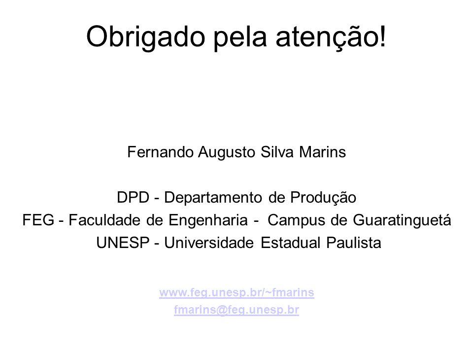 Obrigado pela atenção! Fernando Augusto Silva Marins
