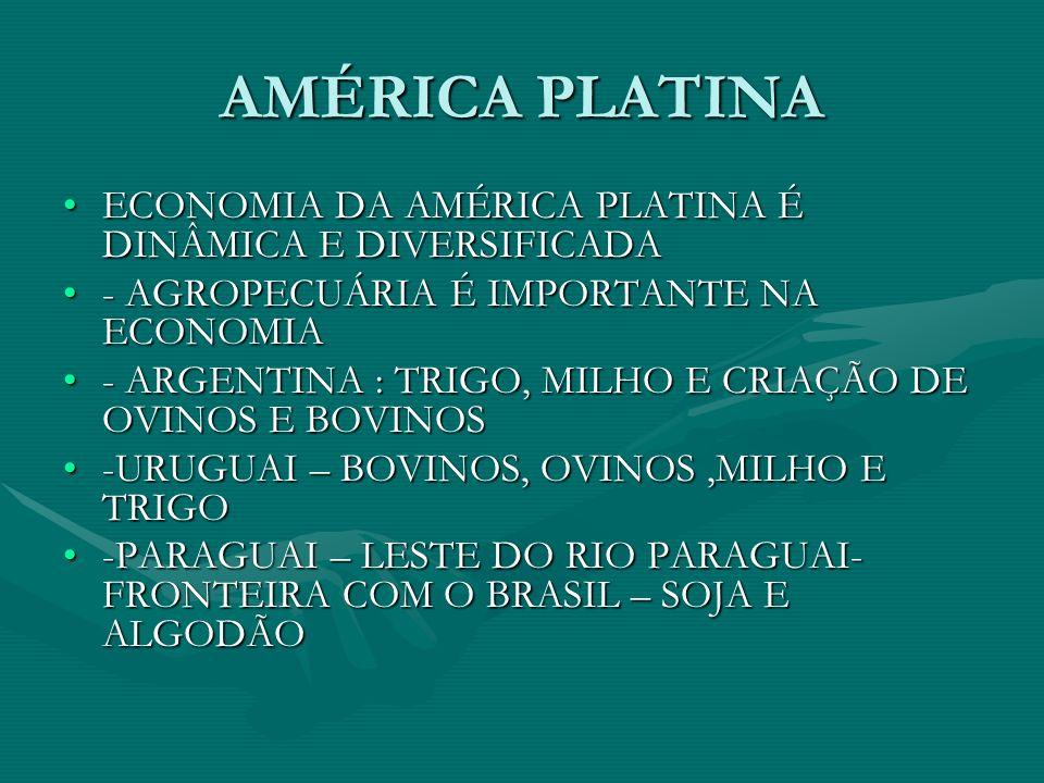 AMÉRICA PLATINA ECONOMIA DA AMÉRICA PLATINA É DINÂMICA E DIVERSIFICADA