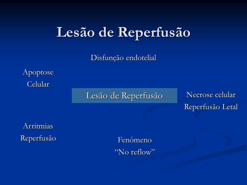 Lesão de Reperfusão Lesão de Reperfusão Disfunção endotelial Apoptose