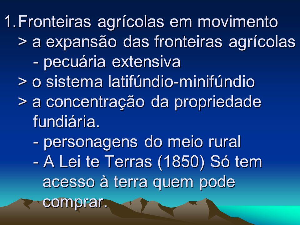 Fronteiras agrícolas em movimento > a expansão das fronteiras agrícolas - pecuária extensiva > o sistema latifúndio-minifúndio > a concentração da propriedade fundiária.