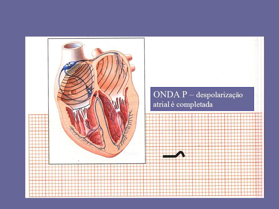 ONDA P – despolarização atrial é completada
