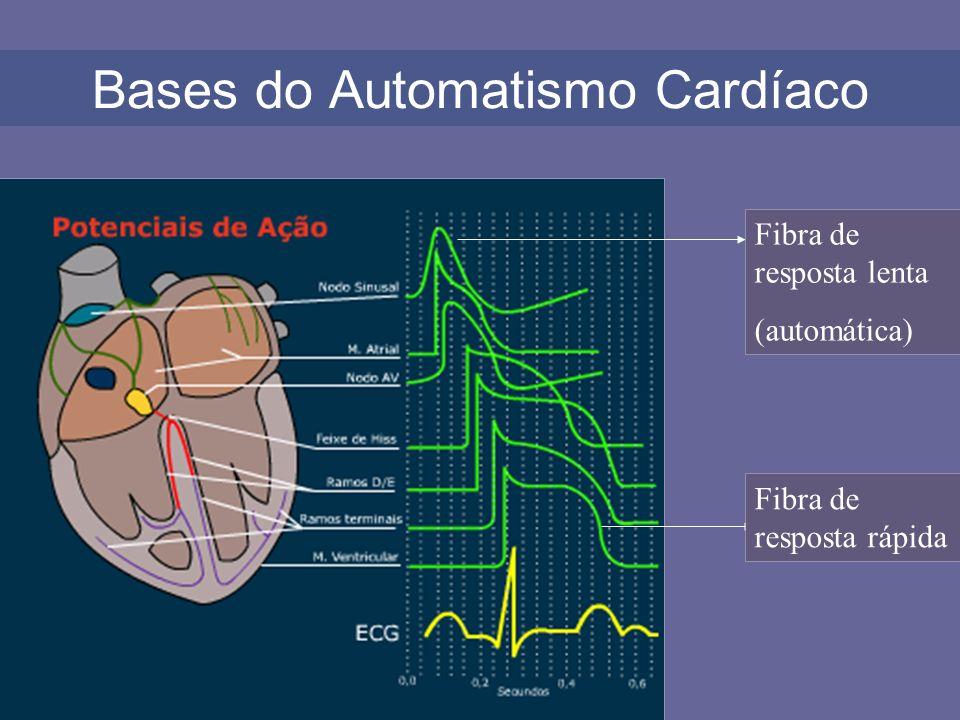 Bases do Automatismo Cardíaco