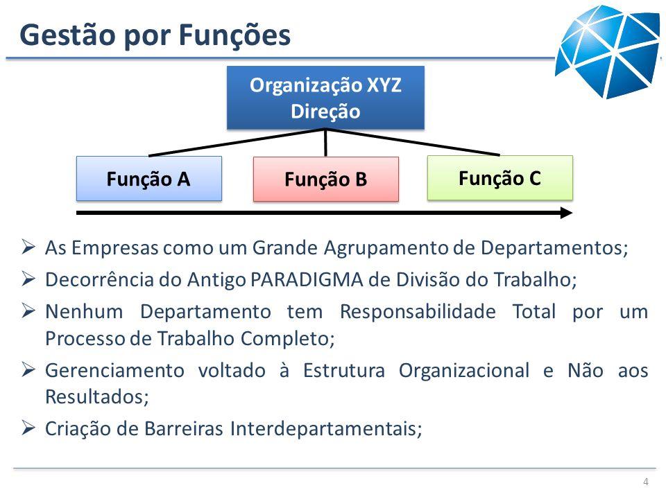 Gestão por Funções Organização XYZ Direção Função A Função B Função C