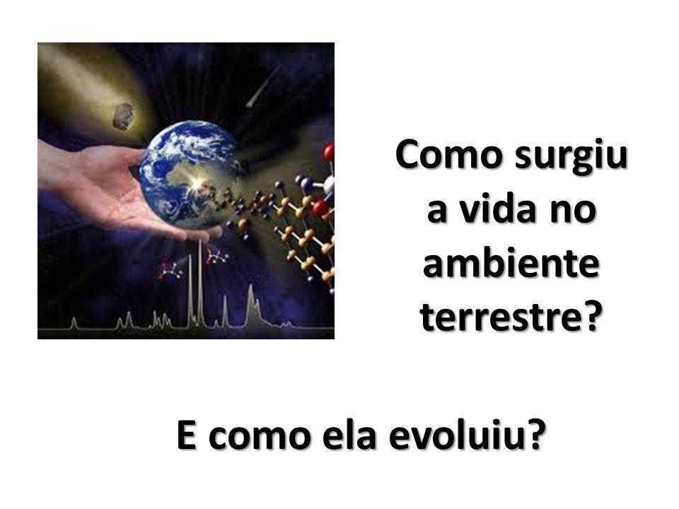 Como surgiu a vida no ambiente terrestre