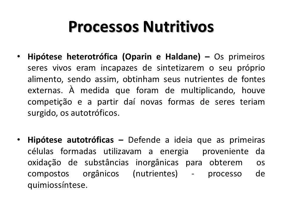 Processos Nutritivos