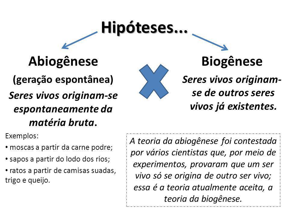 Hipóteses... Abiogênese Biogênese (geração espontânea)
