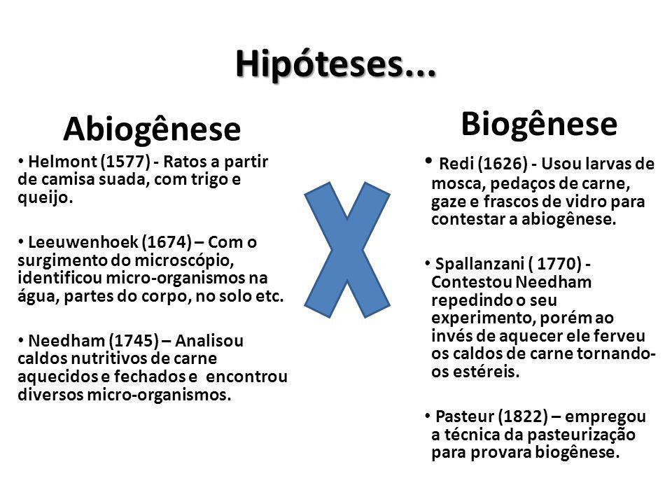 Hipóteses... Biogênese Abiogênese