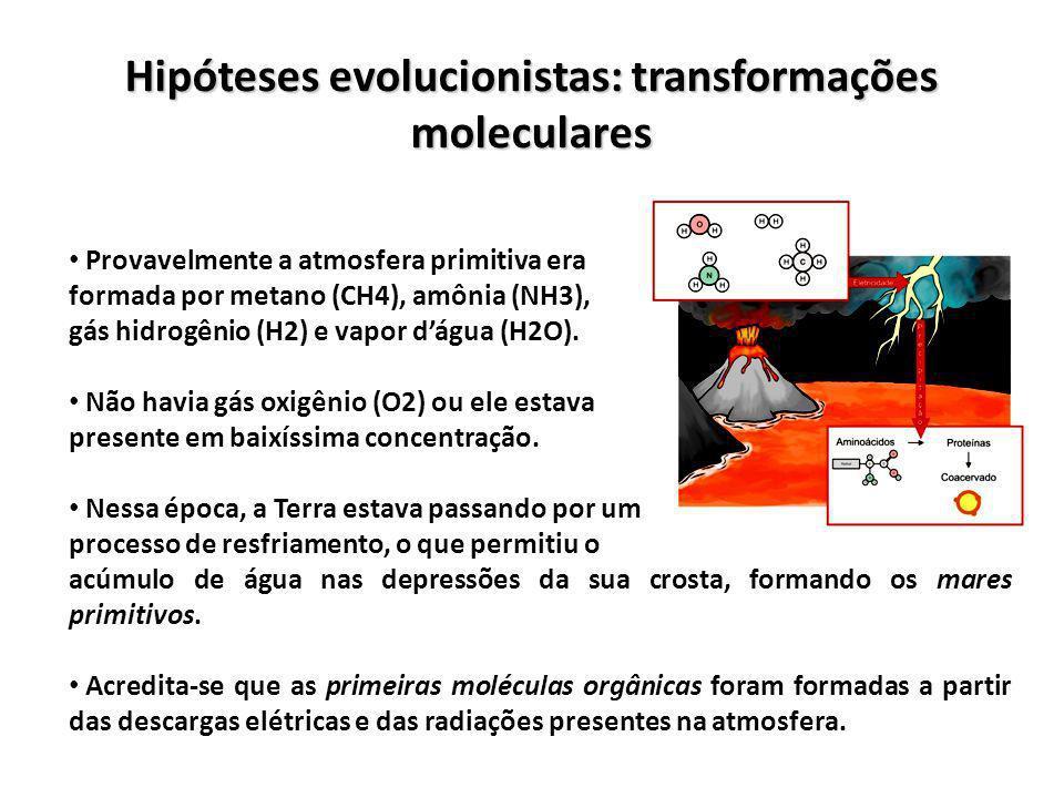 Hipóteses evolucionistas: transformações moleculares