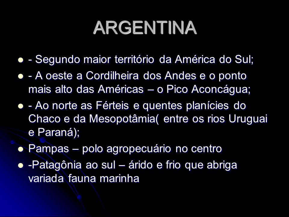ARGENTINA - Segundo maior território da América do Sul;