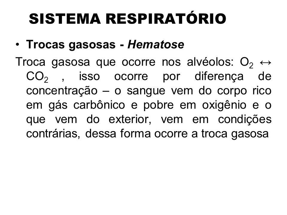 SISTEMA RESPIRATÓRIO Trocas gasosas - Hematose