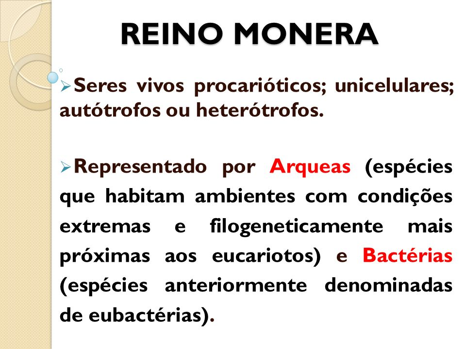 REINO MONERA Seres vivos procarióticos; unicelulares; autótrofos ou heterótrofos.