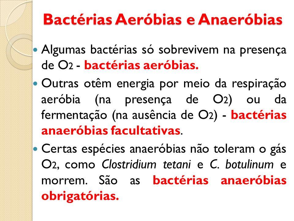 Bactérias Aeróbias e Anaeróbias