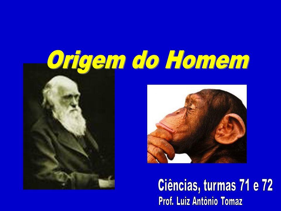 Prof. Luiz Antônio Tomaz