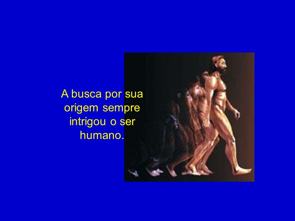 A busca por sua origem sempre intrigou o ser humano.