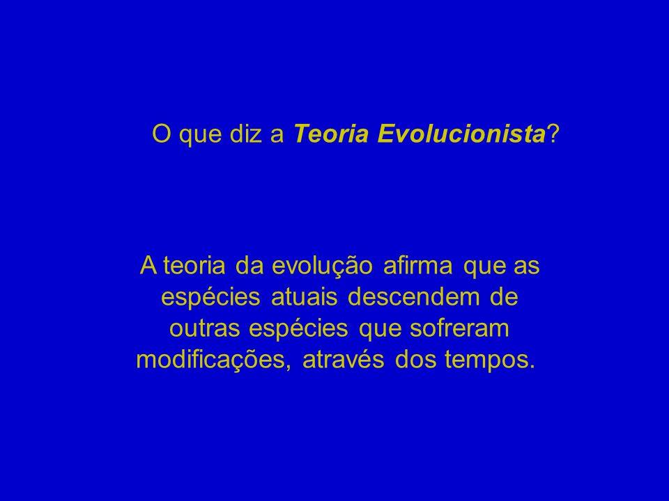 O que diz a Teoria Evolucionista