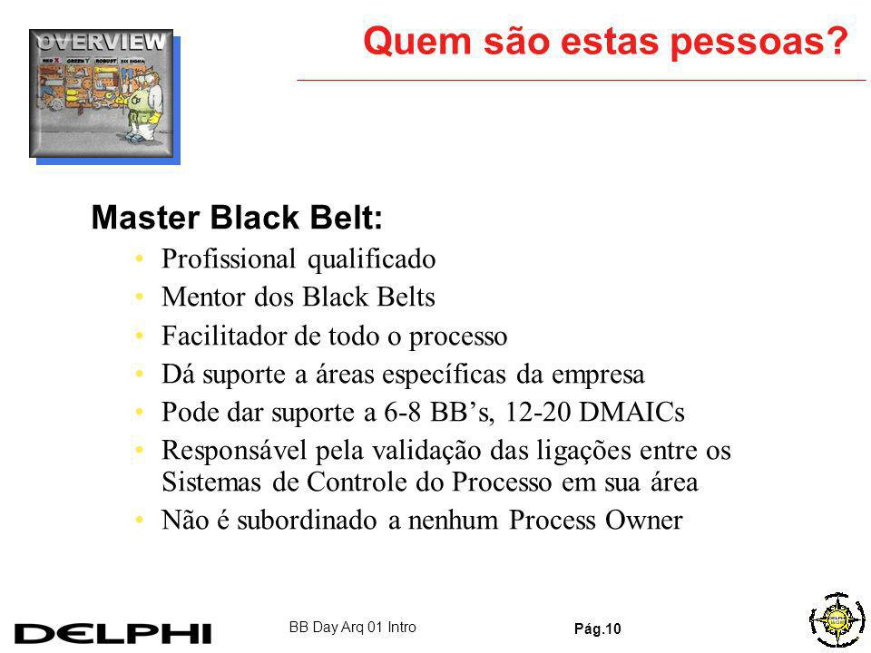 Quem são estas pessoas Master Black Belt: Profissional qualificado