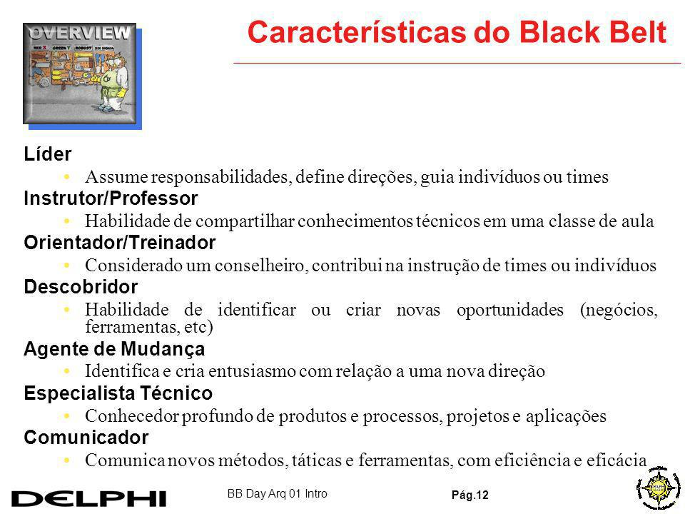 Características do Black Belt