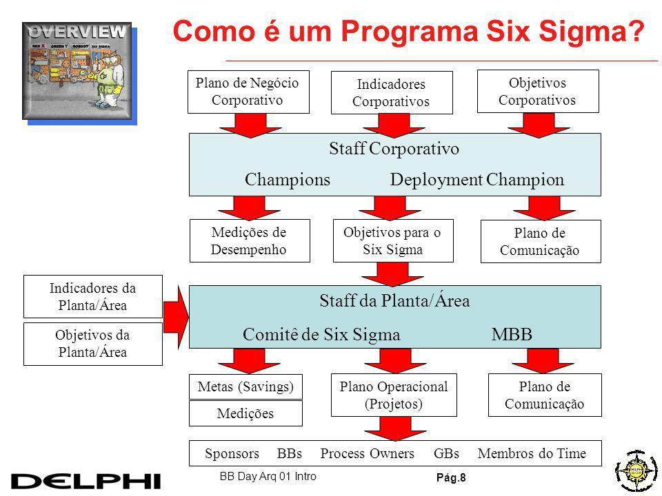 Como é um Programa Six Sigma