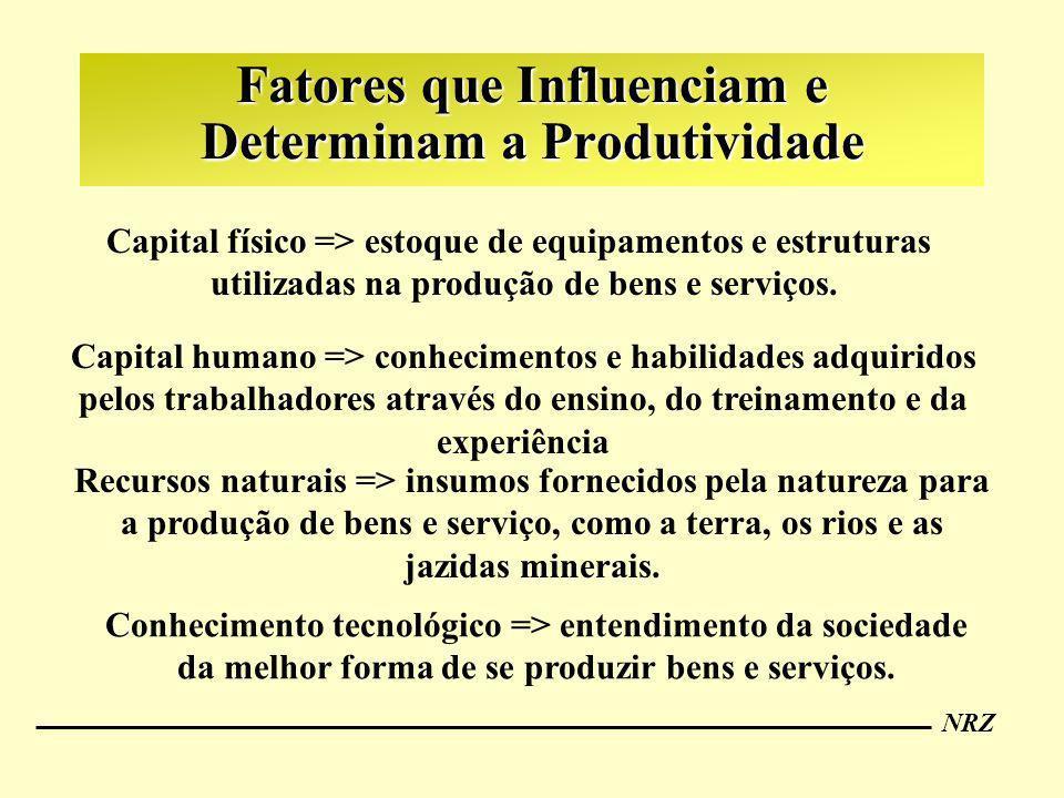 Fatores que Influenciam e Determinam a Produtividade