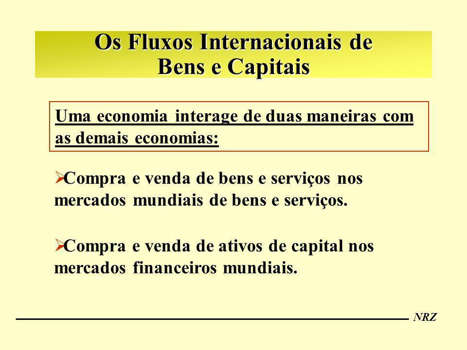 Os Fluxos Internacionais de Bens e Capitais