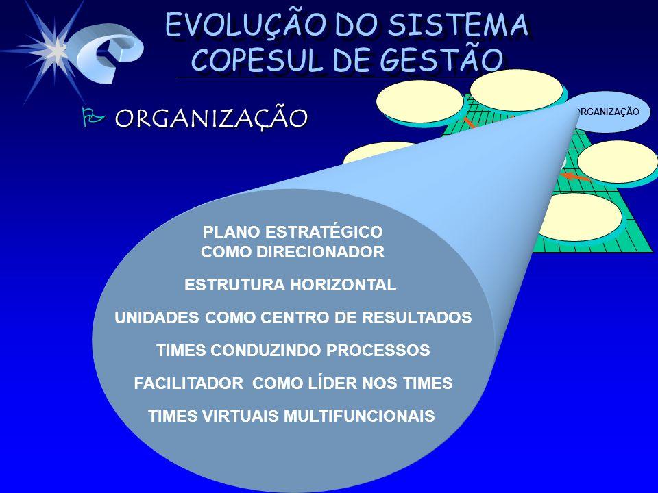 ORGANIZAÇÃO PLANO ESTRATÉGICO COMO DIRECIONADOR ESTRUTURA HORIZONTAL