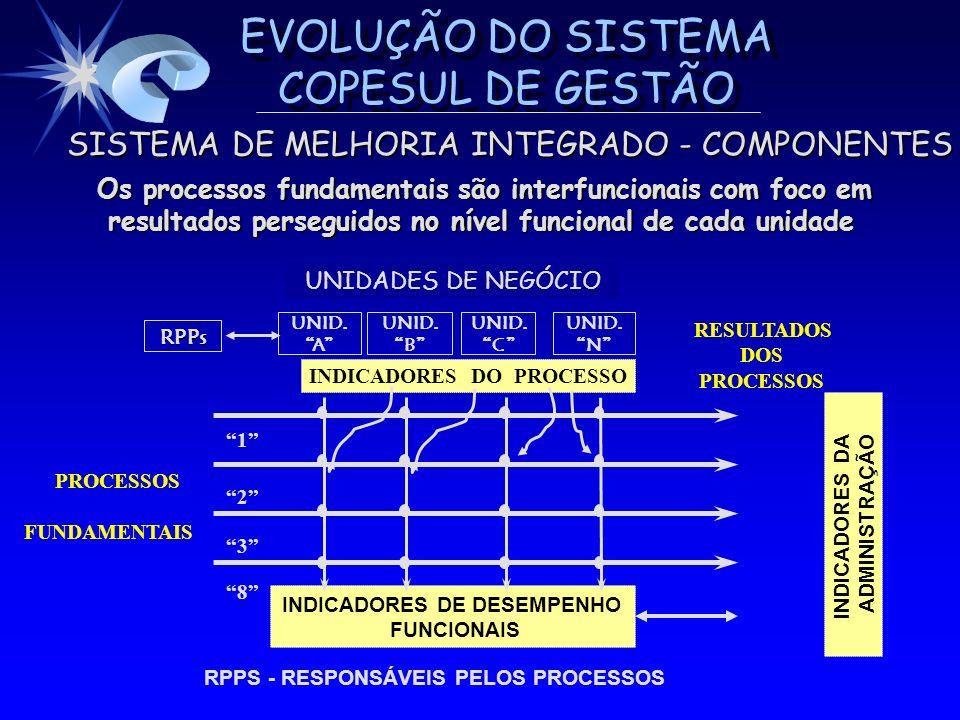 INDICADORES DE DESEMPENHO INDICADORES DO PROCESSO